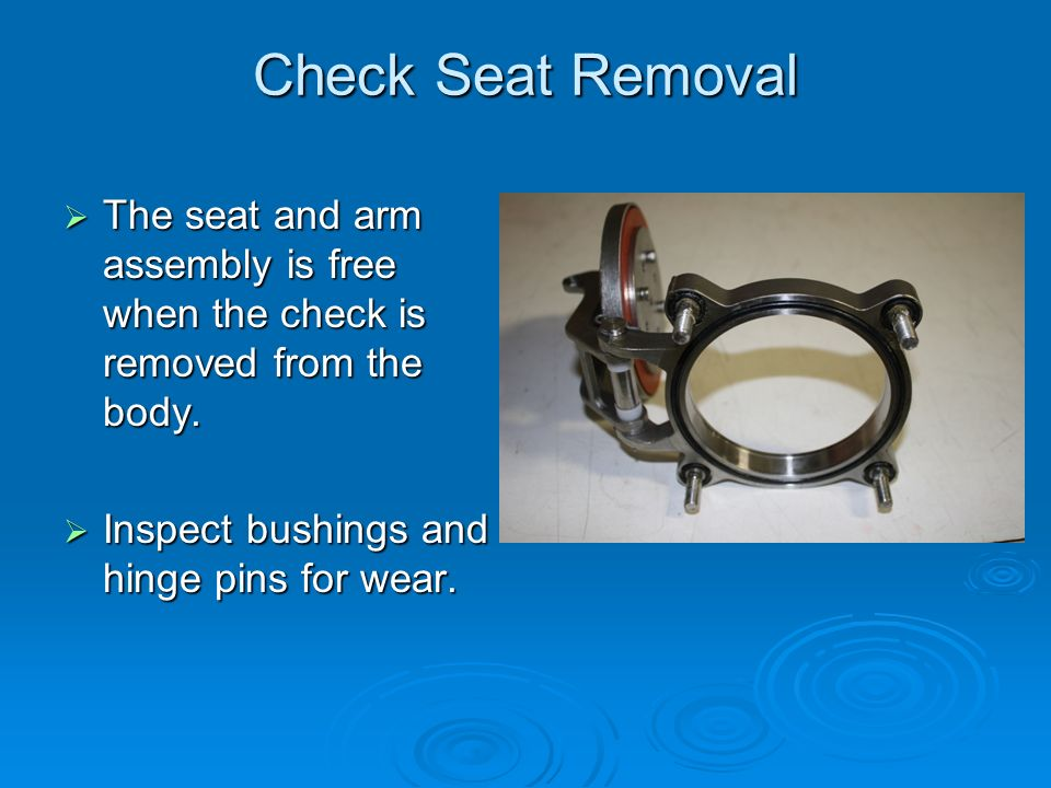 Check Seat Removal  The seat and arm assembly is free when the check is removed from the body.