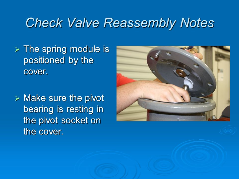 Check Valve Reassembly Notes  The spring module is positioned by the cover.
