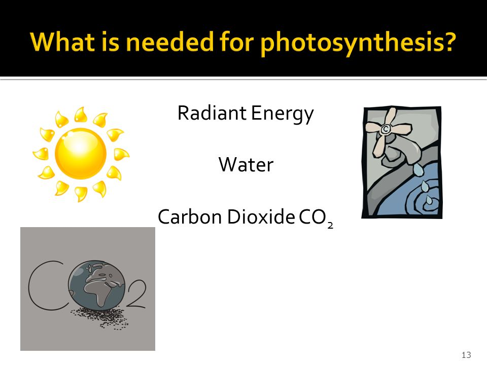 Radiant Energy Water Carbon Dioxide CO 2 13