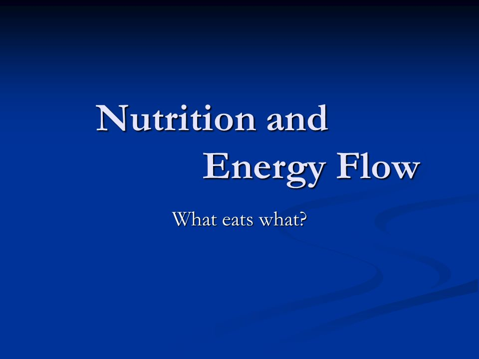 Nutrition and Energy Flow What eats what