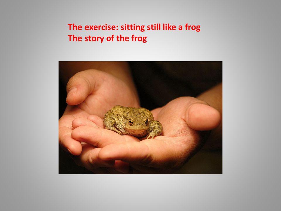 Mindfulness Matters Method Eline Snel Attention Training For