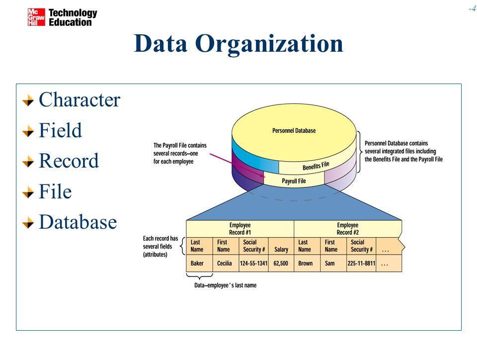 4 4 data organization character field record file database