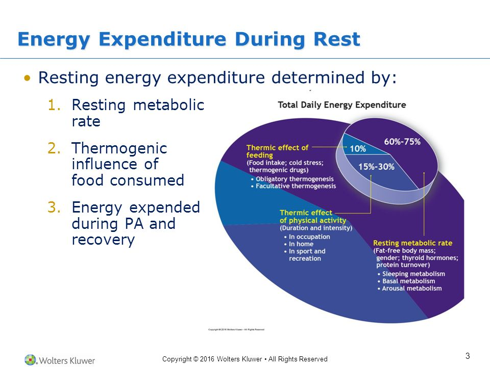 homework 1: resting metabolic rate/energy balance activity Most sources differentiate four different components of total energy expenditure (tee): basal or resting metabolic rate, the thermic effect of activity, the thermic effect of food, and an adaptive component.