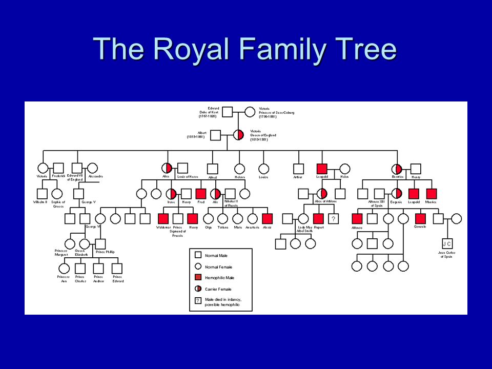 pedigree charts the family tree of genetics what is a pedigree what