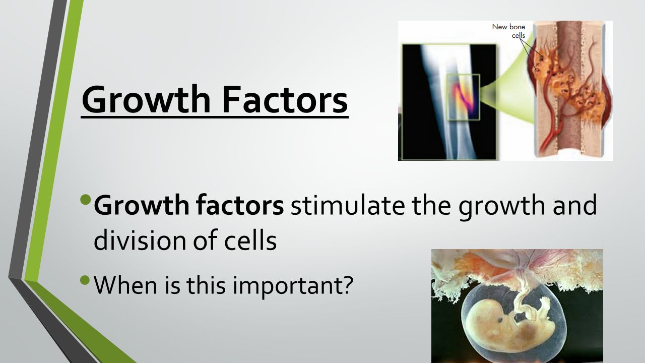 Growth Factors Growth factors stimulate the growth and division of cells When is this important