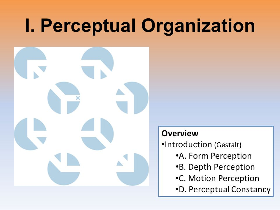 An overview of the organization & the major products ppt video.