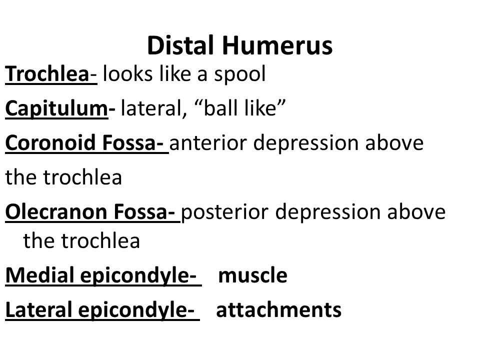 posterior depression of the distal humerus