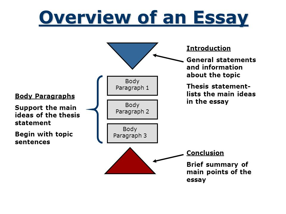 Fifth Business Essays Organizing An Academic Essay Introduction Conclusion Body Paragraphs   Overview Of  Compare And Contrast Essay Papers also Argumentative Essay High School Organizing An Academic Essay Introduction Conclusion Body Paragraphs  Argumentative Essay Examples High School