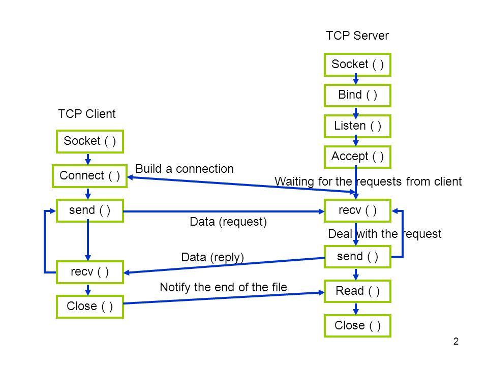 Socket Program Training 10/29/ TCP Client Socket ( ) Connect