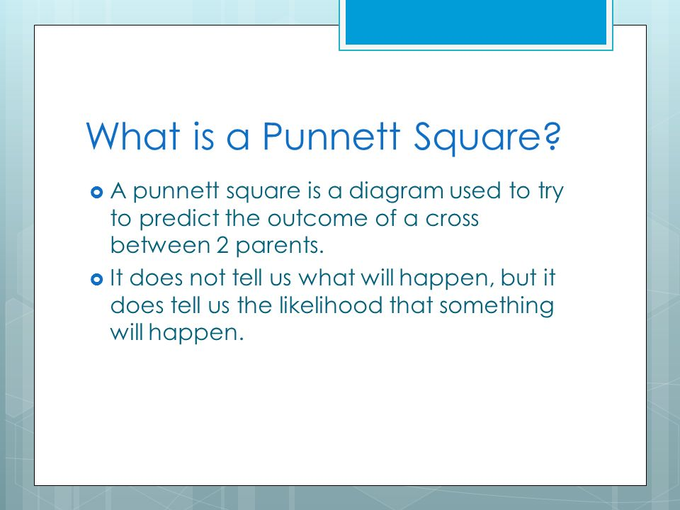 Remarkable How To Make A Punnett Square A Step By Step Method Ppt Download Wiring Digital Resources Remcakbiperorg