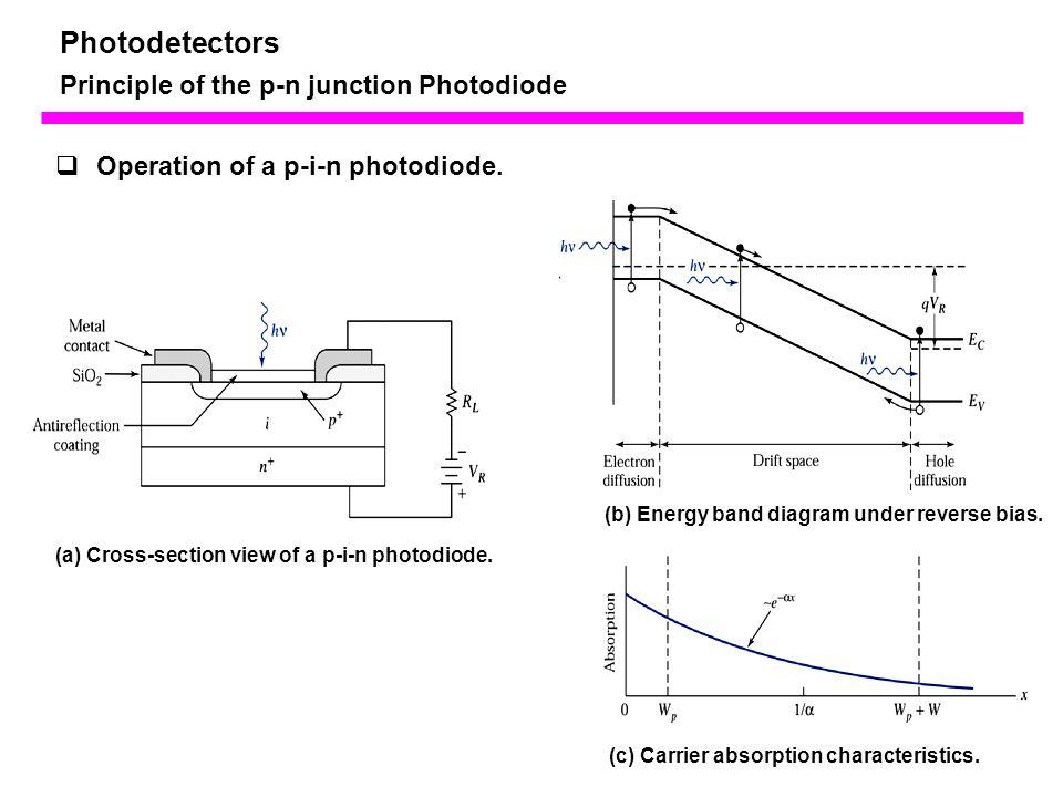 Pin Diode Band Diagram - All Wiring Diagram