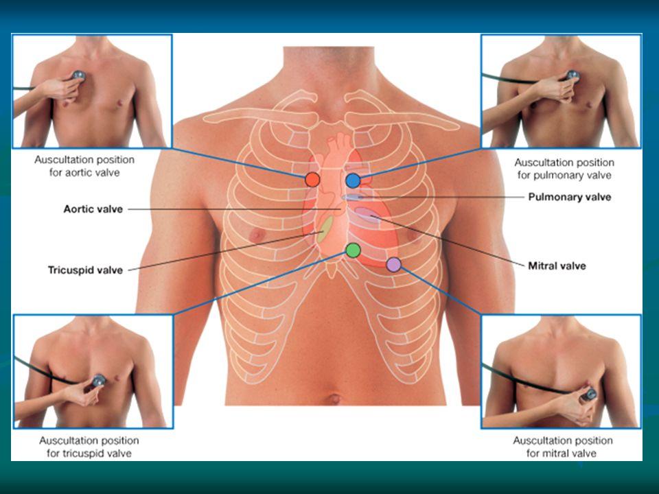 Surface & radiological anatomy of heart & valves Dr. Sama ul Haque ...