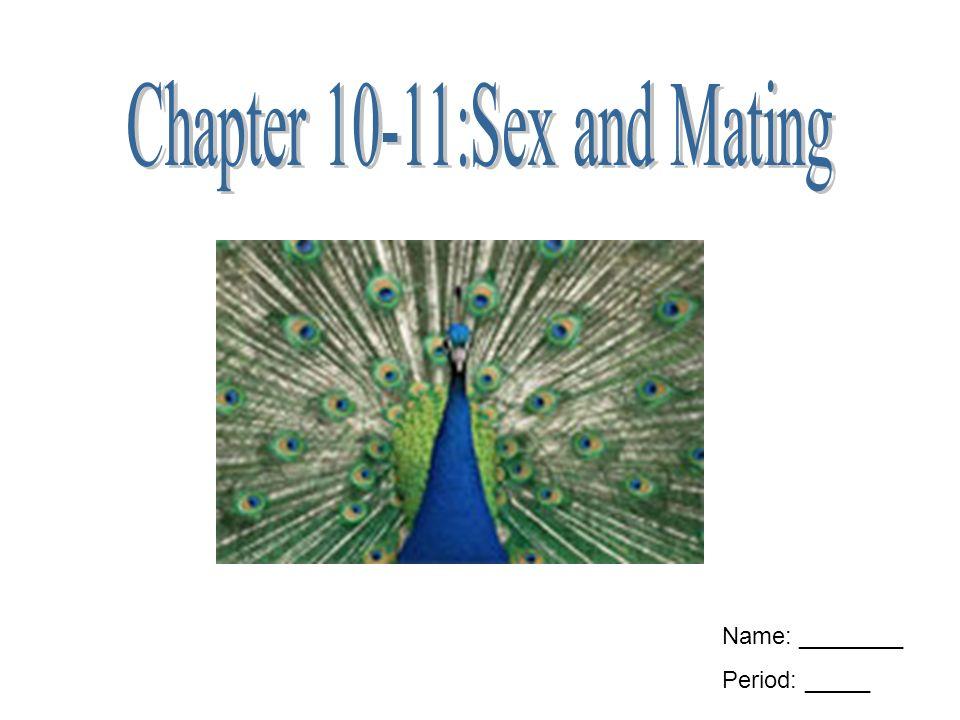 Обмен генетическим материалом секс