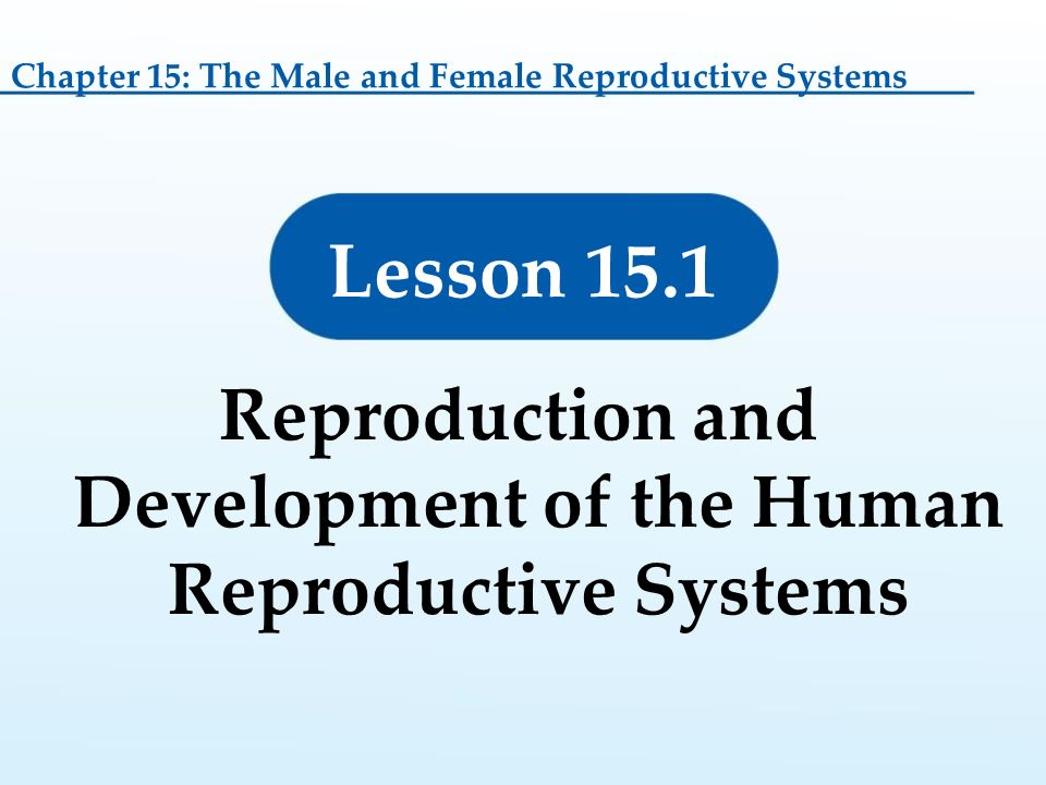 15 Lesson 15.1: Reproduction and Development of the Human ...