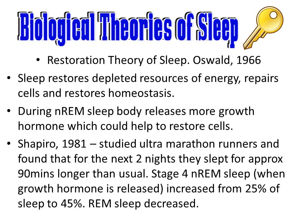 a study on restoration theories of sleep This theory suggests that restoration to the body, from damage caused during the day, occurs during sleep adam and oswald (1983) they suggested new tissue growth occurs during sleep.
