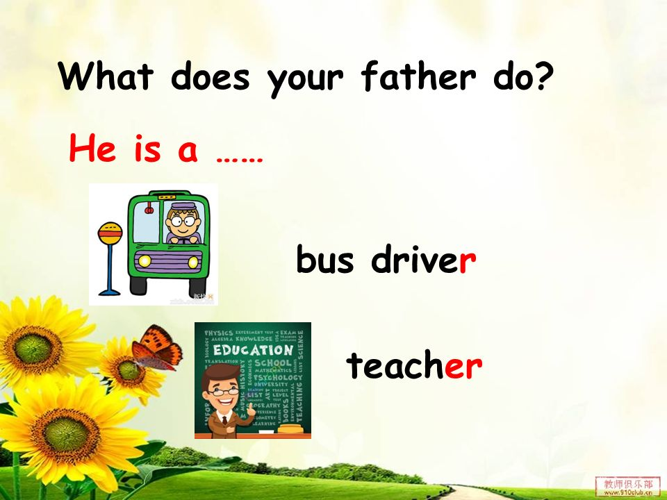 He is a …… What does your father do? bus driver teacher