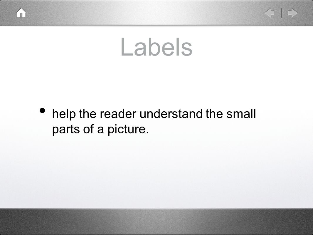 Labels help the reader understand the small parts of a picture.