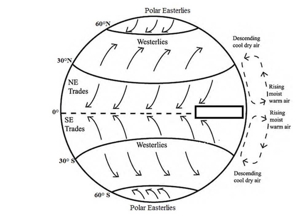 Global Winds Diagram.Global Wind Patterns What Is Wind Wind Is The Movement Of