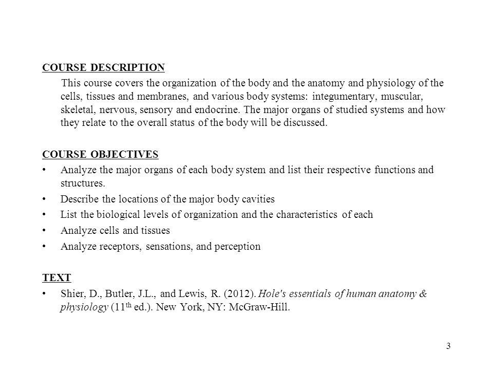 1 Anatomy & Physiology I Chapter 1 Rachel Olsen Adjunct Instructor ...