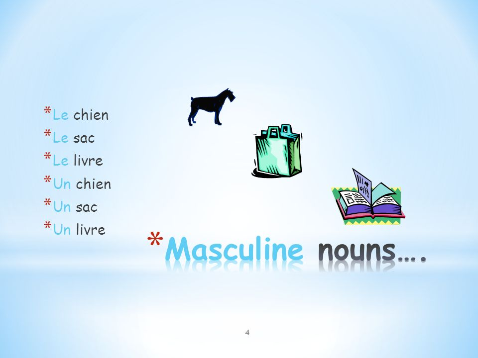 is sac masculine or feminine in french