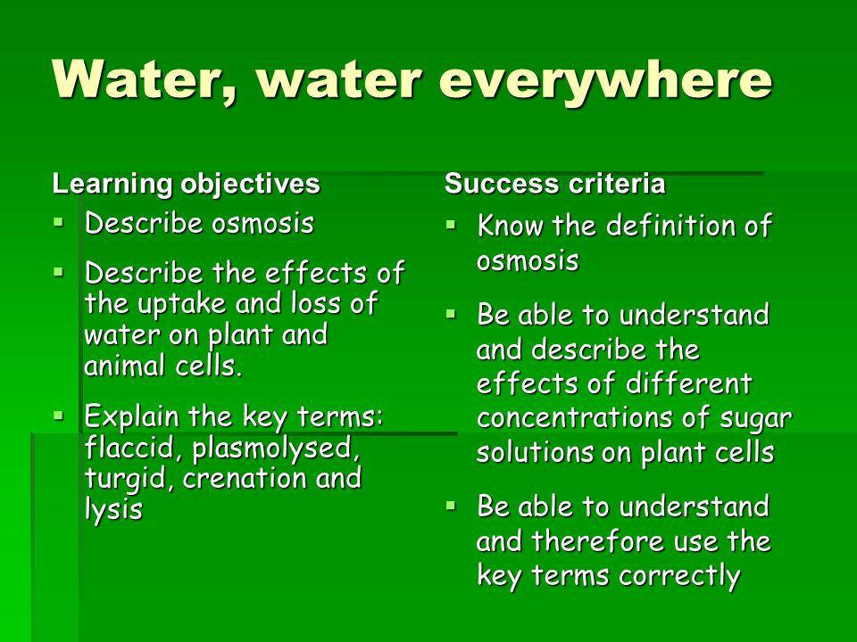 green world definition