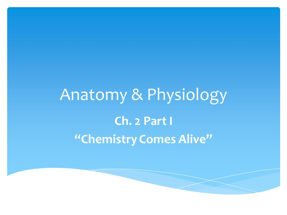 "Anatomy & Physiology Ch. 2 Part I ""Chemistry Comes Alive"" - ppt download"
