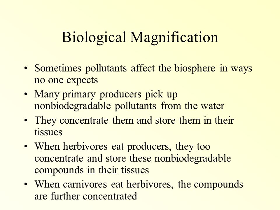how does pollution affect the biosphere