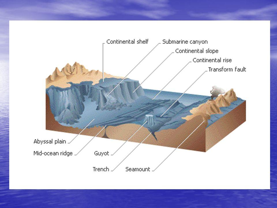 The Ocean Floor And Its Sediments Chapter 16 Ocean Floor Features
