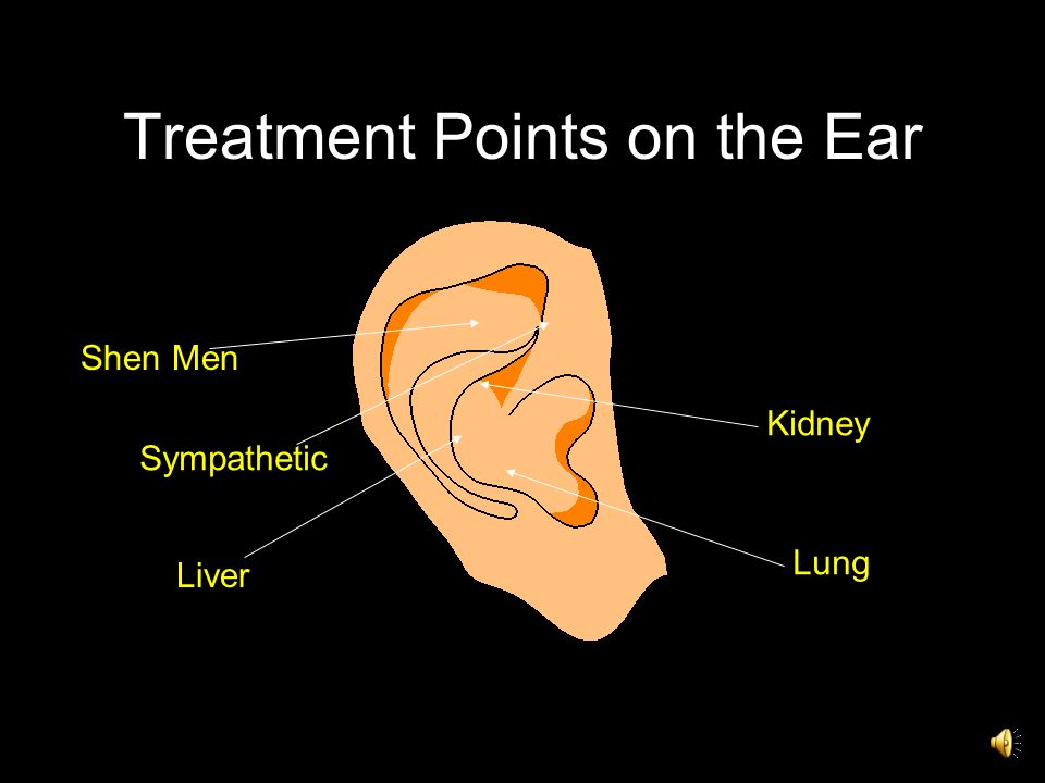 Treatment Points on the Ear Lung Kidney Liver Sympathetic Shen Men