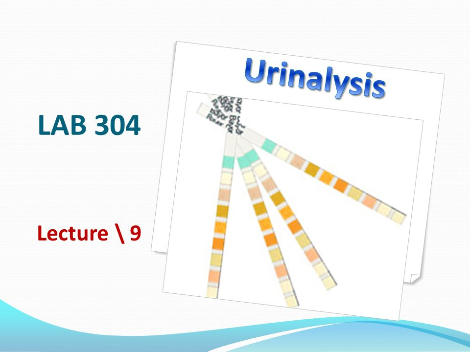 LAB 304 Lecture \\ 9. Learning objectives To recognize urinalysis ...