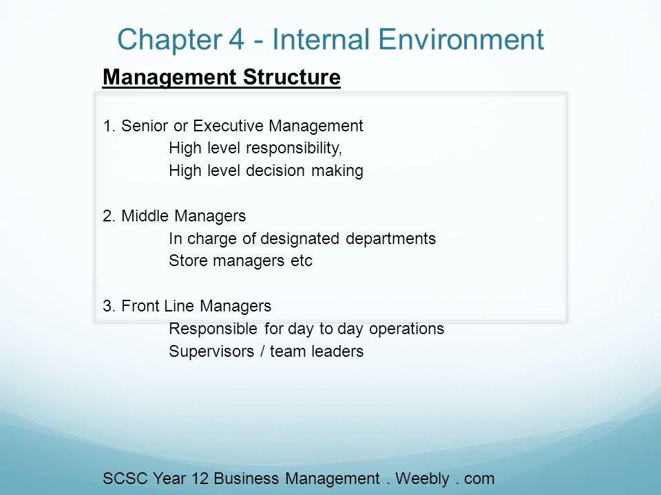 Chapter 4 - Internal Environment Management Structure 1