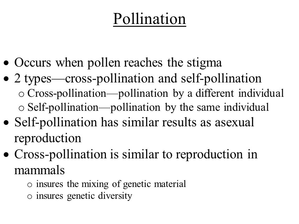 Is self fertilization the same as asexual reproduction in plants