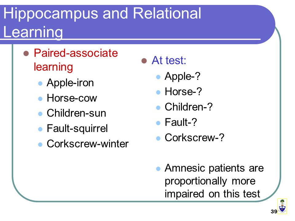 39 Hippocampus and Relational Learning Paired-associate learning Apple-iron Horse-cow Children-sun Fault-squirrel Corkscrew-winter At test: Apple-.