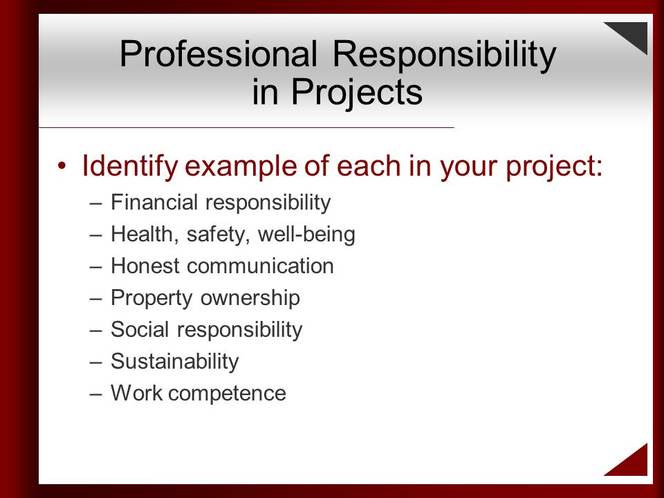 Professional Responsibility Learning About Professional And Ethical