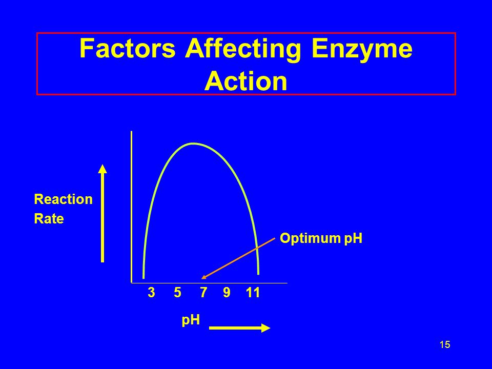 15 Factors Affecting Enzyme Action Reaction Rate Optimum pH pH
