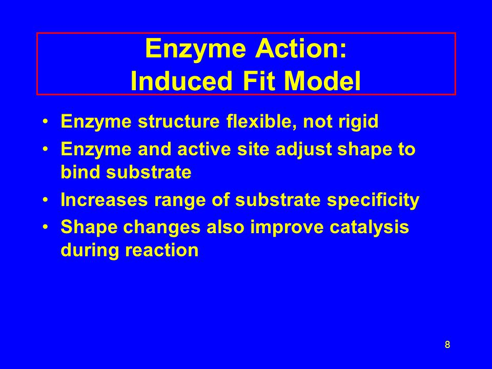 8 Enzyme Action: Induced Fit Model Enzyme structure flexible, not rigid Enzyme and active site adjust shape to bind substrate Increases range of substrate specificity Shape changes also improve catalysis during reaction