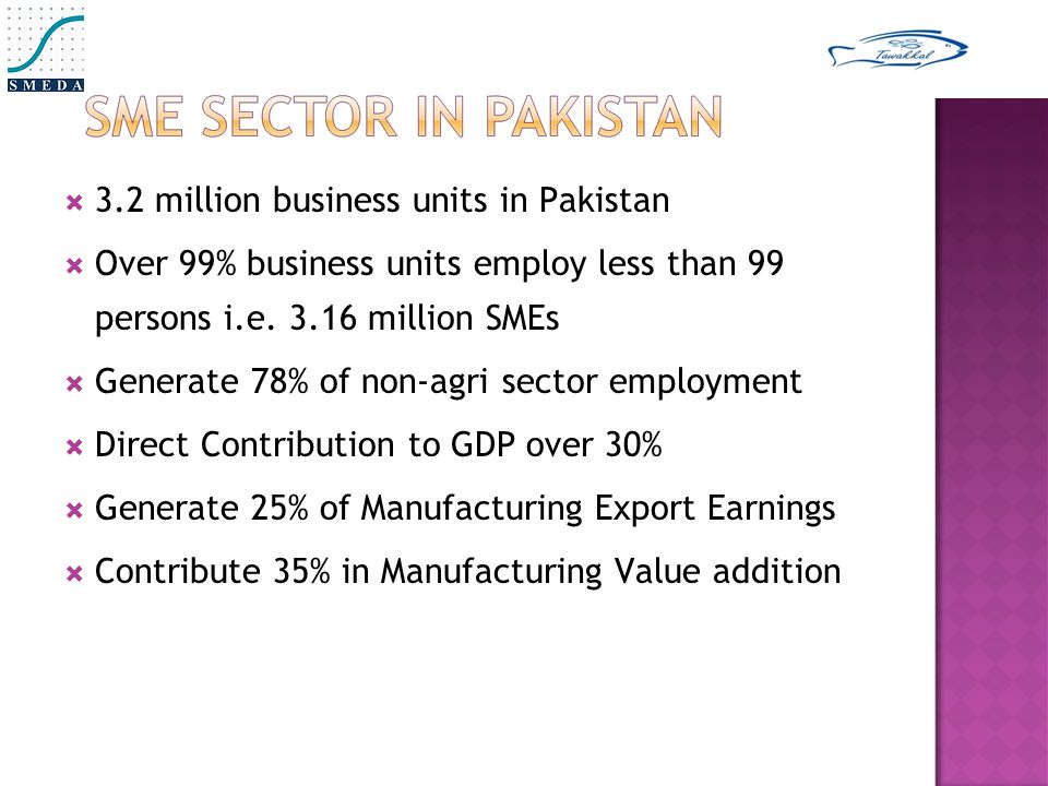  3.2 million business units in Pakistan  Over 99% business units employ less than 99 persons i.e.