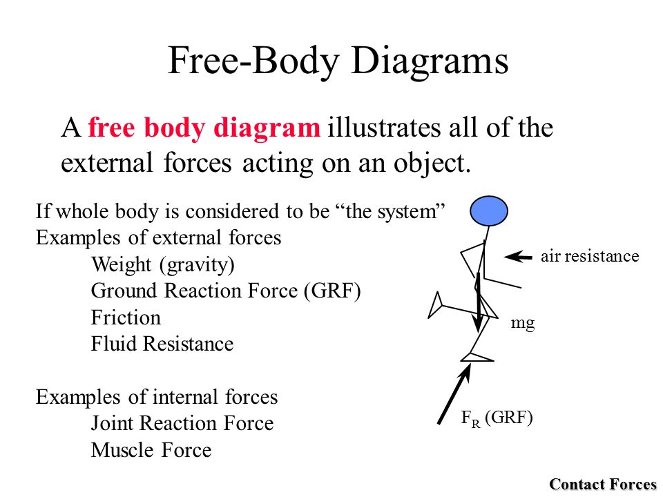 Free Body Diagram Of Kangaroo - Circuit Connection Diagram •