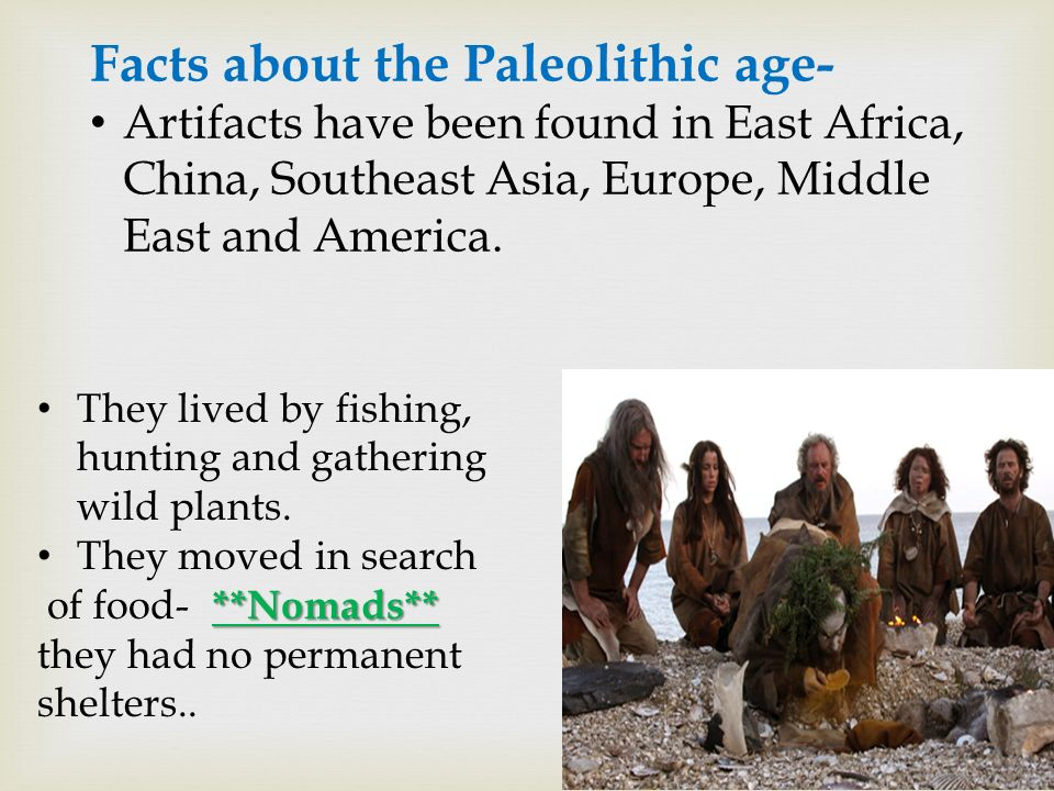 paleolithic facts