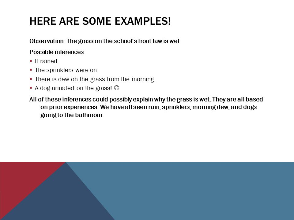 Observations Vs Inferences Mr Robertson Geoscience Ppt Download