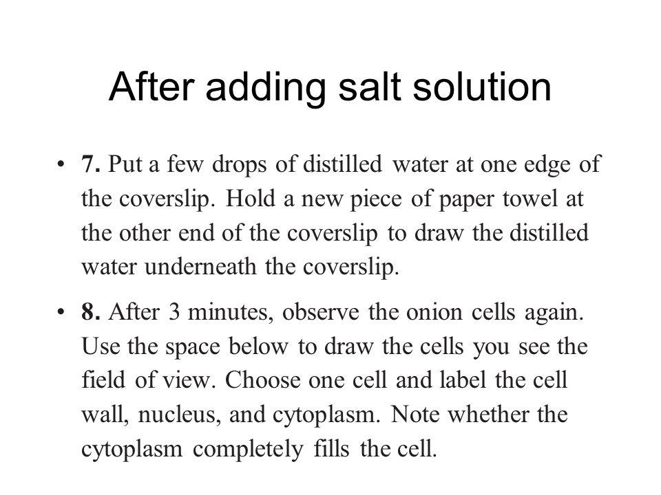 plasmolysis experiment onion cell