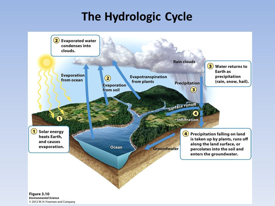 Cycles human impacts the hydrologic cycle the carbon cycle ppt 2 the hydrologic cycle ccuart