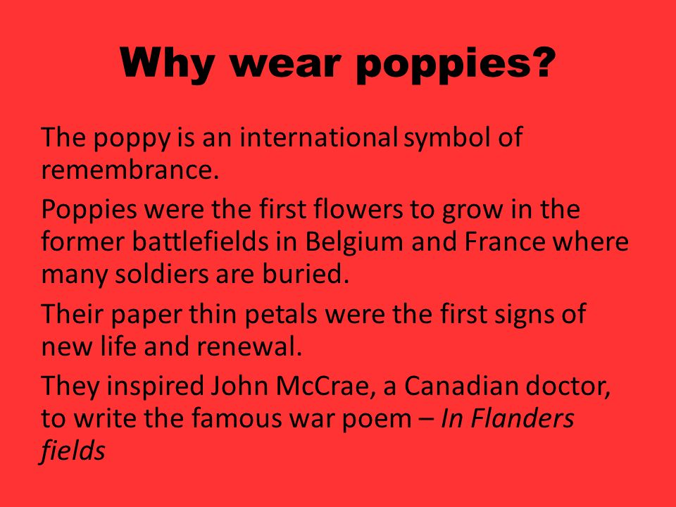 Remembrance Day What Are We Remembering On Remembrance Day Ppt