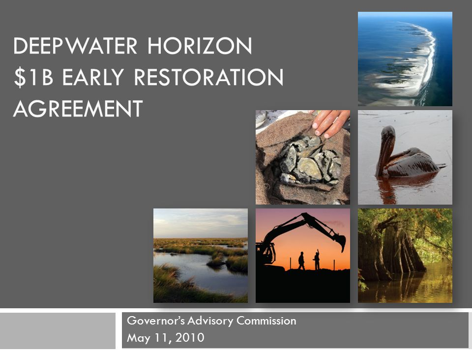 Deepwater Horizon 1b Early Restoration Agreement Governors
