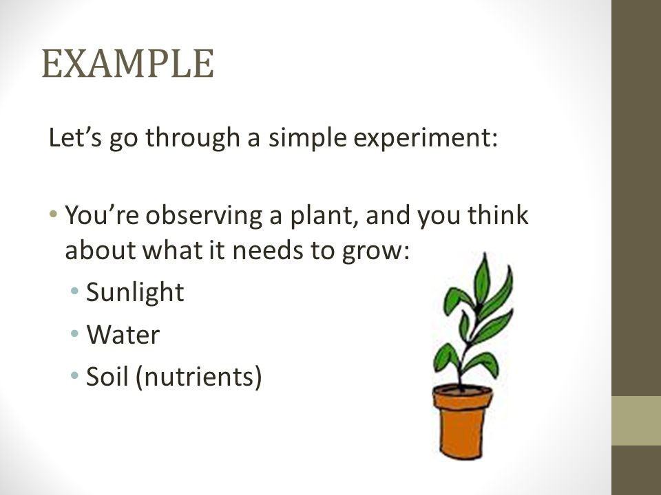 EXAMPLE Let's go through a simple experiment: You're observing a plant, and you think about what it needs to grow: Sunlight Water Soil (nutrients)