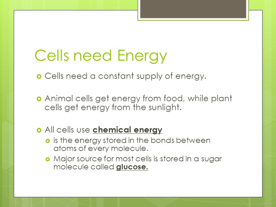 Cells need Energy  Cells need a constant supply of energy.