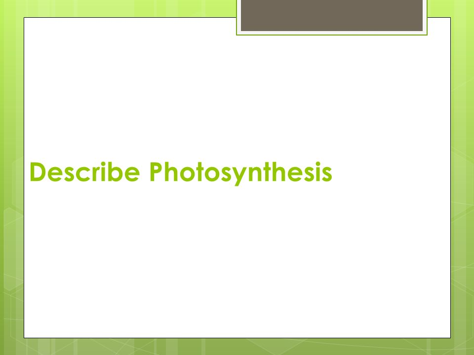 Describe Photosynthesis