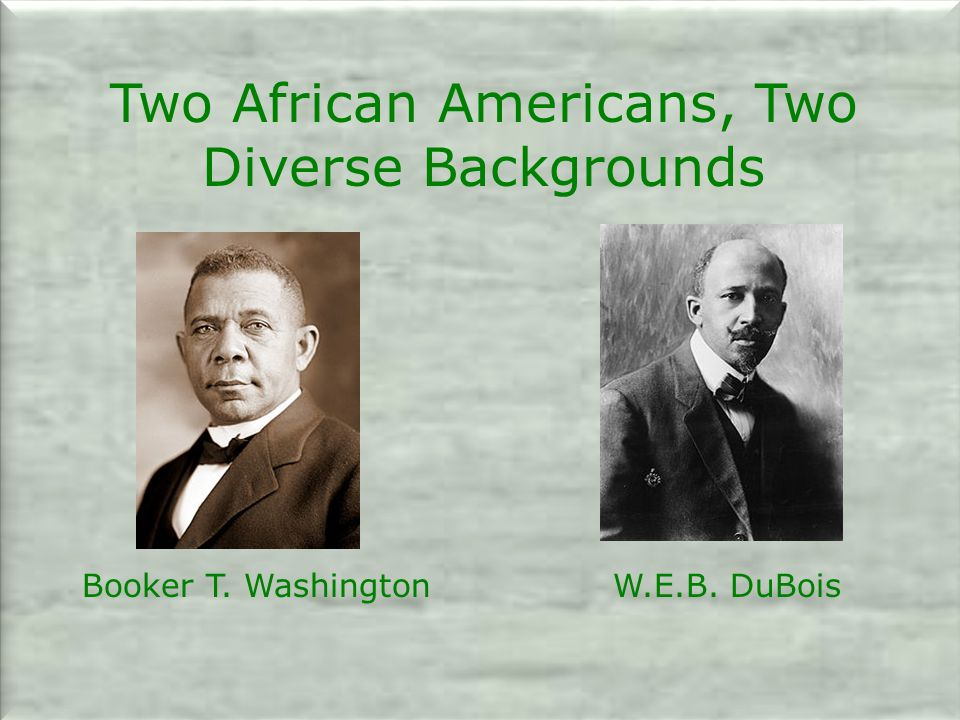 Two African Americans, Two Diverse Backgrounds Booker T. Washington W.E.B. DuBois