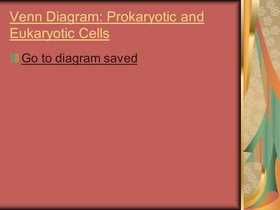Cells diversity size basic parts and prokaryotes vs eukaryotes 21 venn diagram prokaryotic and eukaryotic cells go to diagram saved ccuart Image collections
