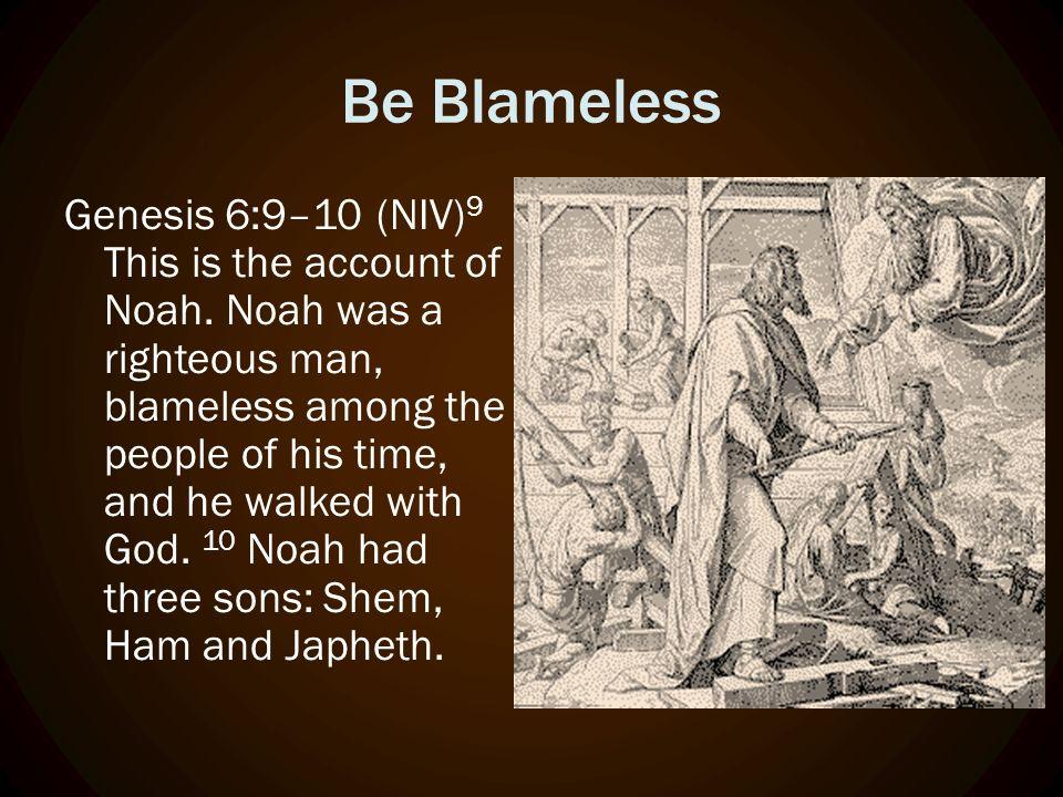The Genesis Men, Noah & Sons
